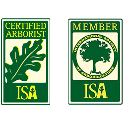 commercial isa certified arborist willow grove pa